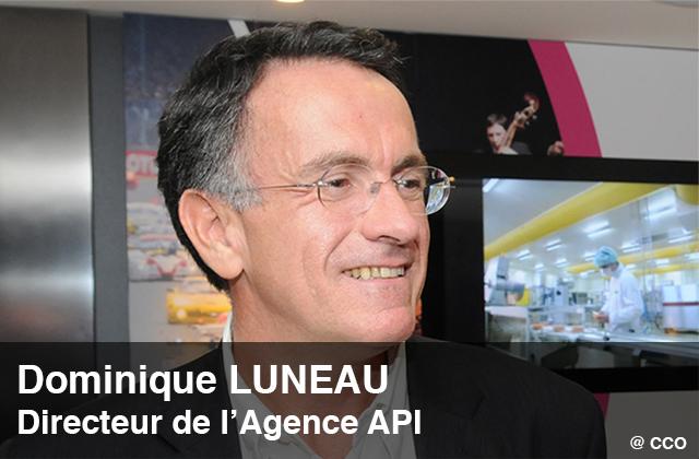 Vignette_Luneau_API